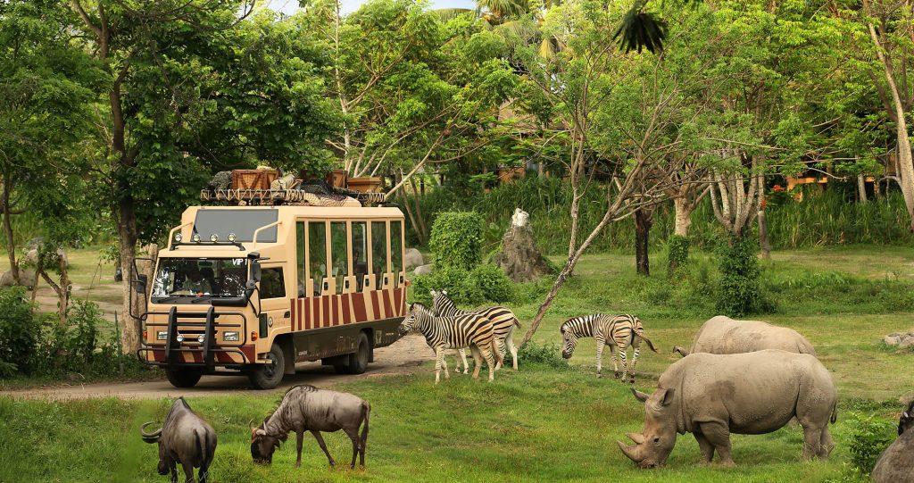 safari destination in kenya