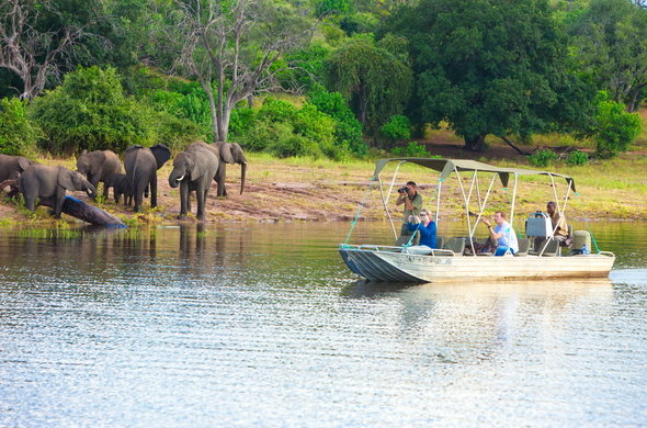 Chobe in Botswana welgrow travels