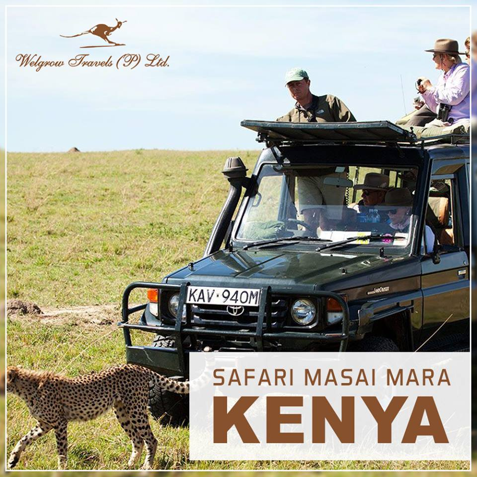 luxury safari travel
